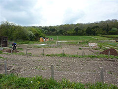 Chorley Road Allotments