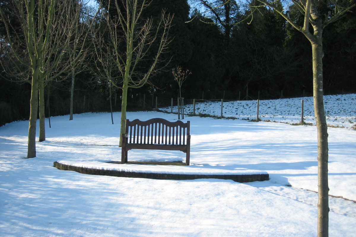 Burial Ground bench in the snow